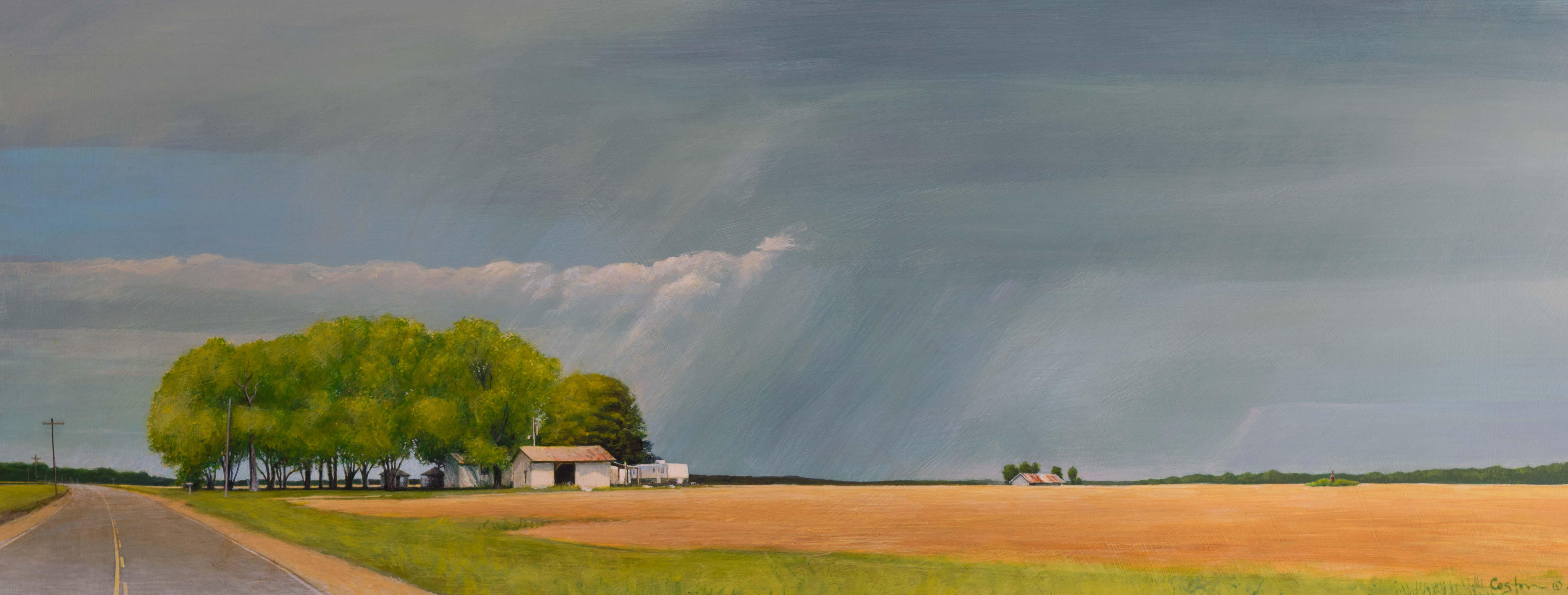 Storm Over Coy