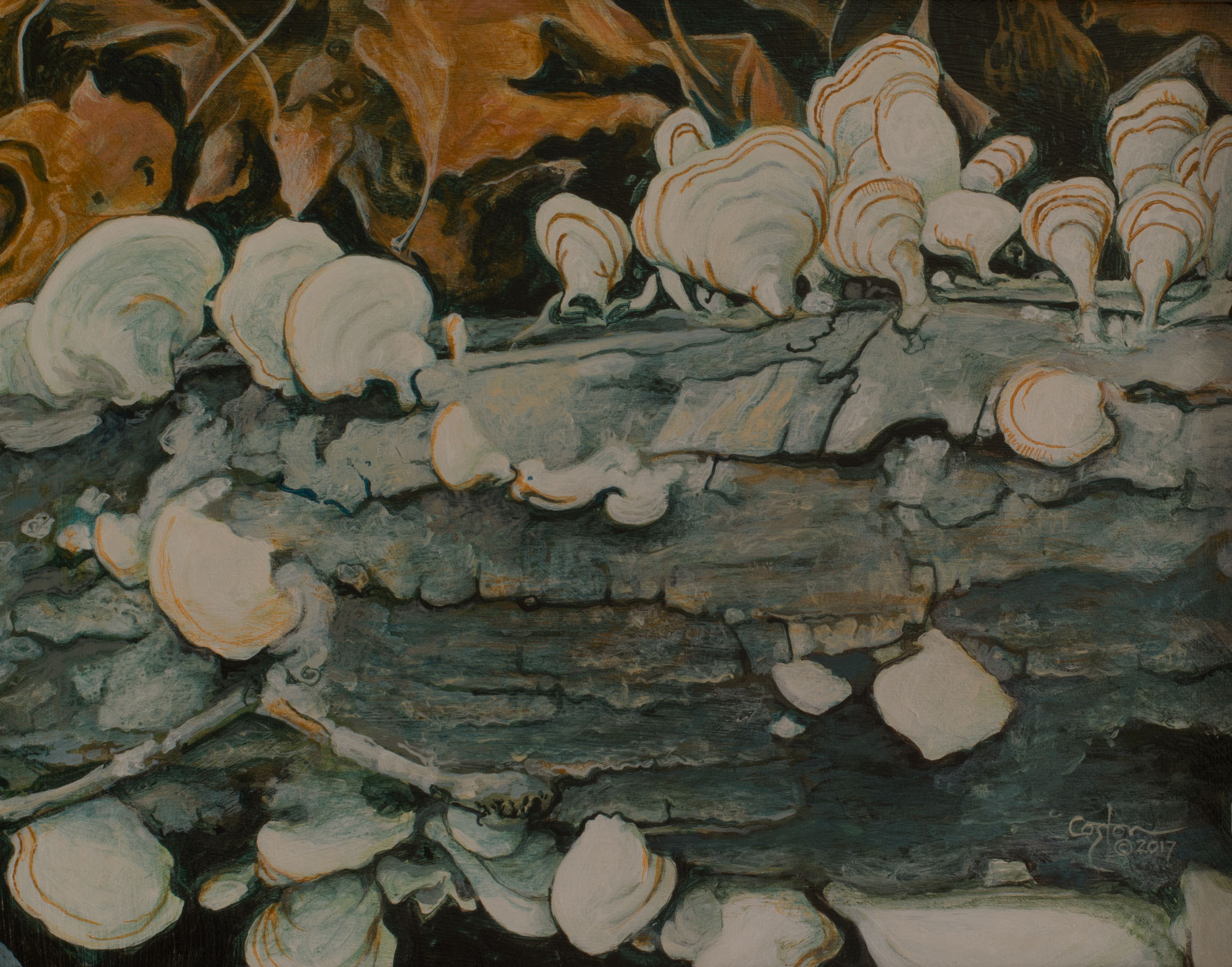 Oak Reef