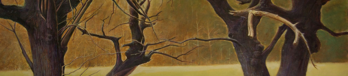 Dance of the Mulberries, Daniel Coston, 2015