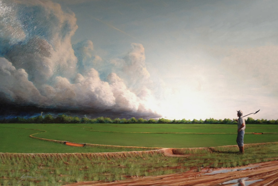 storm, rice field, painting, drew county, arkansas